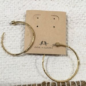 Chloe and Isabel Gold Branch Hoops